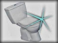 vivere verde: Sbiancare e disinfettare il fondo del WC con percarbonato