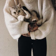 not clothes but this belongs here Animals And Pets, Baby Animals, Cute Animals, Crazy Cat Lady, Crazy Cats, I Love Cats, Cute Cats, Doja Cat, Tier Fotos
