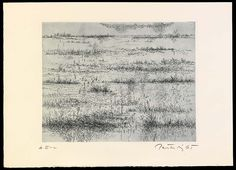 Marshes in Winter, from the portfolio A Genesis 1967 Gabor Peterdi, born Pestujhely, Hungary 1915-died Stamford, CT 2001 etching and engraving 11 x 13 1/2 in. (27.9 x 34.3 cm) Smithsonian American Art Museum, Gift of Joan Peterdi