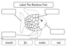 Week Day 4 Free printable for the Rainbow Fish by Marcus Pfister. Kindergarten literacy cut and paste activity: label the rainbow fish :) Rainbow Fish Activities, Ocean Activities, Classroom Activities, Book Activities, Rainbow Fish Eyfs, Rainbow Fish Template, Kindness Activities, Rainbow Fish Story, The Rainbow Fish