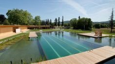 A whiff of chlorine is virtually synonymous with taking a dip in a swimming pool. But Switzerland's new all-natural swimming pool is entirely chemical-free, relying instead on a biological filter system to provide clean and natural water for thousands of patrons, no itchy red eyes in sight.