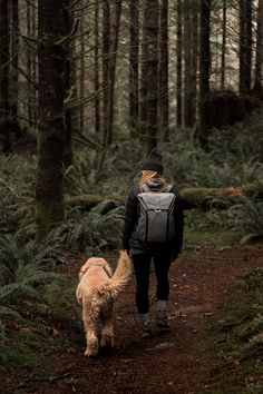 A pacific northwest adventure. A girl and her goldendoodle. - A pacific northwest adventure. A girl and her goldendoodle. Adventure Aesthetic, Camping Aesthetic, Hiking Photography, Dog Photography, Landscape Photography, Adventure Photography, Night Photography, Landscape Photos, Goldendoodle