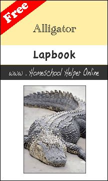Free Alligator Lapbook - Homesschool Helper Online - use with Alberto the Dancing Alligator
