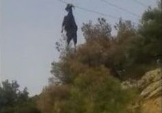 Amazing Rescue Video Of Goat Hanging From Power Cables By Its Horns