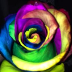 Flores de colores!!!! Color en tu vida by IDEAS 4-2 Ideas4two@gmail.com