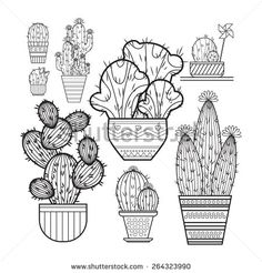 A set of cacti - line drawing. Vector illustration of a cactus isolated on a white background. Cactus in a pot. Cactus and children pinwheel, bow.The cactus blooms.