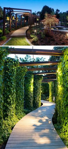 Modern Walkways And Paths That Are Creative And Functional This modern wood pathway is surrounded by ivy covered arches and lit up by overhead lights.This modern wood pathway is surrounded by ivy covered arches and lit up by overhead lights. Landscape Lighting Design, Landscape Designs, Landscape Architecture, Architecture Design, Building Architecture, Landscape Drawings, Light Architecture, Abstract Landscape, Landscape Paintings