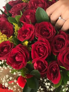 Muslim Couples, Marriage Proposals, Girl Pictures, Wedding Engagement, Bride, Plants, Instagram, Garden, Photography