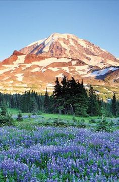 Crystal Mountain, Washington