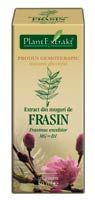 extract din muguri de frasin Food, Essen, Meals, Yemek, Eten