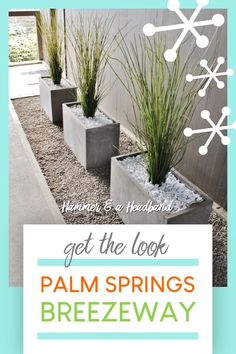 How to Create a Palm Springs Breezeway With Unkillable Plants Have you seen the mid-century modern b Front House Landscaping, Modern Landscaping, Backyard Landscaping, Backyard Designs, Landscaping Ideas, Front Porch Plants, Modern Front Yard, Palm Springs Style, Breezeway