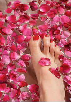 rose petal baths #FlowerShop