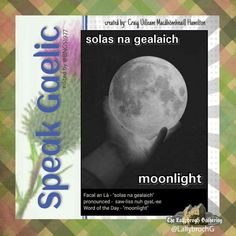Scottish Gaelic Phrases, Scottish Words, Scottish Quotes, Gaelic Words, Ee Words, Irish Language, Celtic Music, Word Of The Day, Scotland Travel