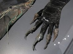 Catwoman's claws from Batman Returns