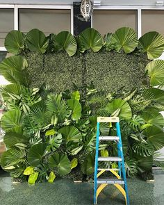 Decor for the pour at with Jungle Theme Birthday, Wild One Birthday Party, Safari Theme, Diy Wedding Backdrop, Wedding Reception Decorations, Plant Wall, Plant Decor, Backdrop Decorations, Backdrops