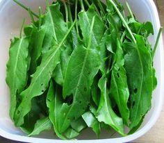 przepisy na zielone koktajle i green smoothies po polsku Smoothies, Health Eating, Spinach, Vegetables, Fitness, Food, Gymnastics, Meal, Eten