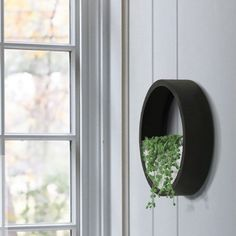 Turn your plants into art. These stylish ring-shaped wall planters come in small, medium and large. Arrange them in multiples for a unique wall garden. <br>  <ul><li> Iron and glass ring shaped planters have a removable glass front </li> <li> Perfect for succulents </li> <li> Available in black, brown, yellow and white to go with any décor  </li> </ul>