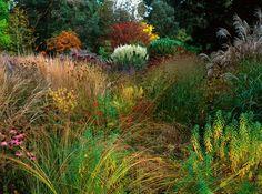 Grasses, Knoll Gardens
