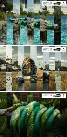 I dont know why but i always like the use of animals in car advertising. This is Mitsubishi's way of pointing out that there car is also suitable for the modern jungle. In addition i also fou…