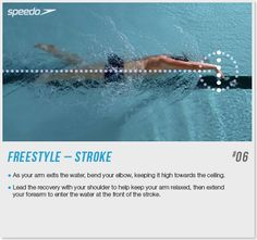 Get Speedo Fit Freestyle stroke tips - Speedo.com