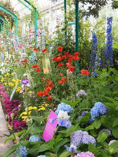 New York Botanical Garden tribute to Monet