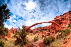 Canyon Landscape   Photo by Tyson Call
