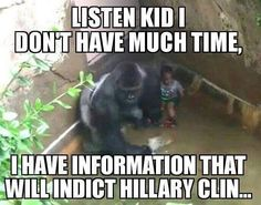 The only Harambe post that made me laugh