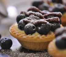 Inspiring picture blue berry, blueberries, blueberry, blueberry cake, blueberry tart, cake.