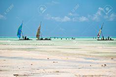 sailing clubs, zanzibar - Google Search Sailing, Bucket, Club, Google Search, Beach, Water, Outdoor, Candle, Gripe Water