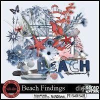 Beach Findings
