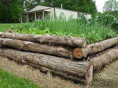 ecffbafffec pixels raised bed gardensraised bedslog bedperennial gardensvegetables