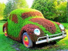 Topiary art │ www.freesamples.us
