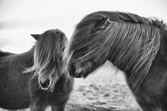 © to National Geographic Daily Dozen — Photos -- National Geographic Your Shot