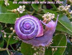 journey's /motivating/inspiring