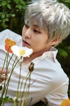 EXO's Nature Republic Photocard // Kim Minseok Baekhyun Chanyeol, Kim Minseok Exo, Kai Exo, Exo Ot12, Bts And Exo, Chanbaek, K Pop, Exo Nature Republic, Rapper