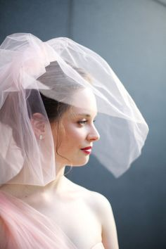 A blush pink veil and wedding dress...all together now...WOW!
