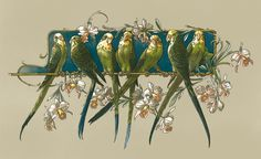 "Budgies ""Anton Seder from ""Das Thier in der Decorativen Kunst"". Bijoux Art Nouveau, Jugendstil Design, Motifs Animal, Art Nouveau Design, Art Graphique, Door Murals, Fractal Art, Bird Art, Artist Art"