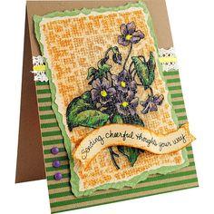 Violets by Pam Hornschu