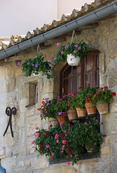 Arles Window in Provence_ France Porches, Garden Windows, Purple Home, Provence France, Window Boxes, Windows And Doors, Container Gardening, Outdoor Gardens, Beautiful Places