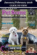 Las Vegas Pet Scene Magazine - January/February 2016 Inside This Issue: Introducing A New Dog To The Family, Beating The Post-Holiday Blues, Set A Training Goal & Plan, Pet Rooms, IBD – Signs & Treatment, Meet Big V, Non-Traditional Pets… plus adoptable pets, coupons, pet events and much more!