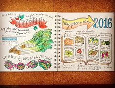 The final pages of my #illustrated #allotment #journal for 2015. You can also view them on my blog (link in profile) and read about my 2016 plans.