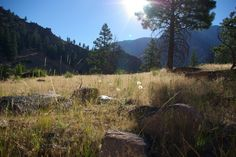 Middle Fork of the Salmon River, early am shot
