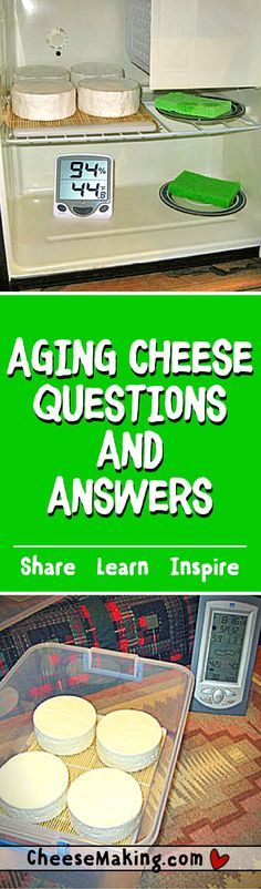 Cheese FAQ Find Answers to all of your questions on aging cheese at home.Find Answers to all of your questions on aging cheese at home. Goat Milk Recipes, No Dairy Recipes, Cheese Recipes, Dip Recipes, Making Cheese At Home, How To Make Cheese, Butter Cheese, Meat And Cheese, Cheese Dips