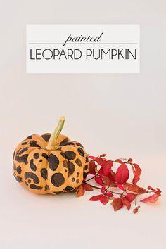leopard painted pumpkins