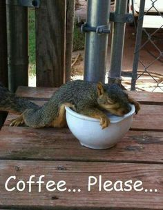 Coffee humor-this is me on a Monday morning! #CoffeeTime #CoffeeHumor