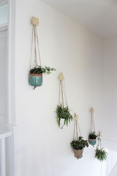 Wall of hanging plants with DIY plywood hooks and macrame hangers Growing Spaces Deco Nature, Decoration Plante, Deco Floral, Hanging Planters, Diy Hanging, House Plants Hanging, Hanging Plant Wall, Plant Wall Diy, Wall Plant Holder