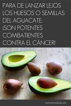 PARA de tirar los huesos o semillas del aguacate: Son potentes combatientes contra el cáncer! #salud