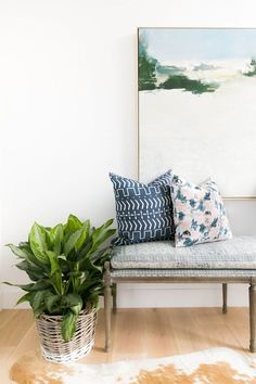 Bringing the Outdoors In: Our Favorite Plants + How To Keep Them Alive   Studio McGee Blog