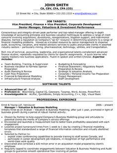 Resume Sample Finance Tech Executive Page Resume For Someone - Sample director of finance resume