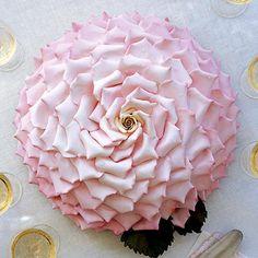 ROSE INSPIRED CAKE - 150 INDIVIDUAL PETALS